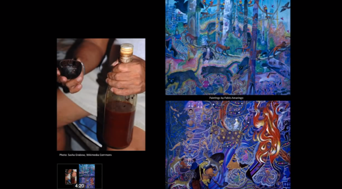 ayahuasca, addiction, graham hancock,